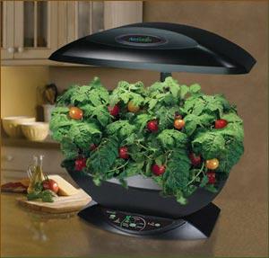 Amazoncom AeroGarden 2101 00S Classic 7 Pod with Gourmet Herb