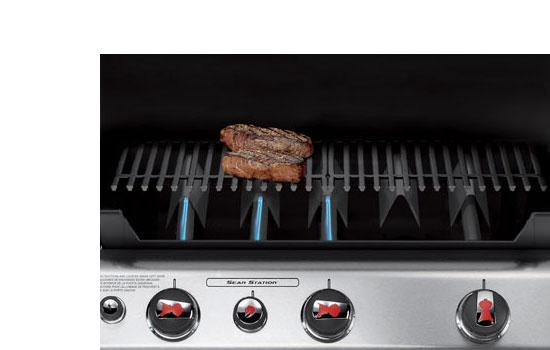 weber genesis 6517001 e 310 637 square inch 38 000 btu liquid propane gas grill. Black Bedroom Furniture Sets. Home Design Ideas