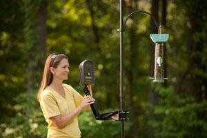 BirdCam mounting