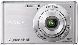 Amazon.com : Sony Cyber-Shot DSC-W530 14.1 MP Digital Still Camera ...