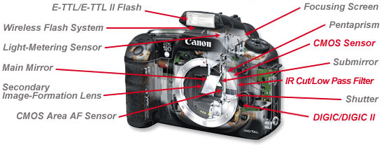 Camera Body Diagram Wiring Diagram Detailed