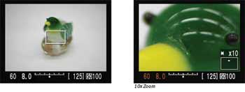 Canon Mark III highlights
