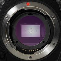 Image Sensor Dust Protector