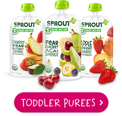 sprout toddler purees