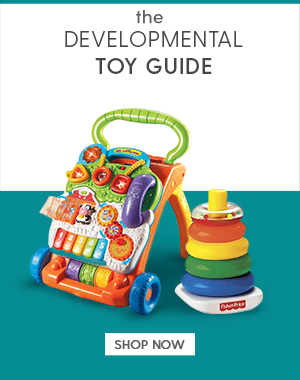 Developmental Toy Guide