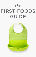 The First Foods Guide