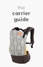 The Carrier Guide