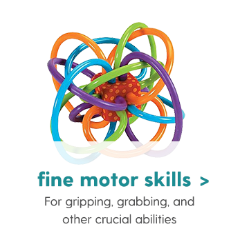 Fine Motor Skills For gripping, grabbing, and other crucial abilities