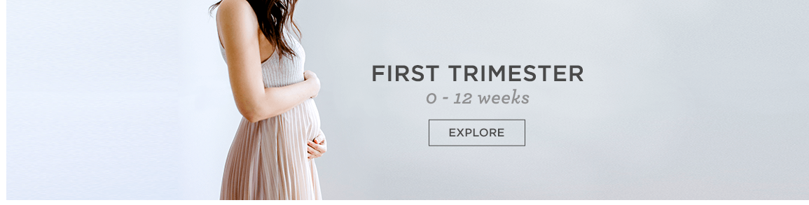 First Trimester 0 -12 weeks Explore