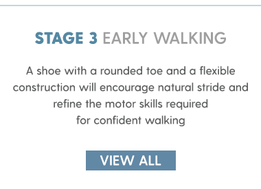 stage 3 early walking
