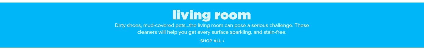 Shop All Living Room