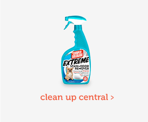 Clean Up Central