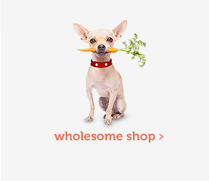 Wholesome Shop