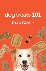 Dog Treat 101