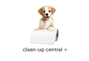 Clean-up Central