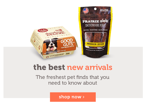 the best New Arrivals The freshest pet finds that you need to know about