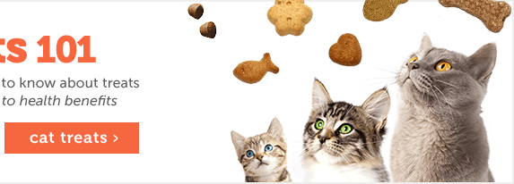 Treats 101- Cats