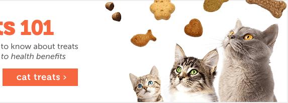 Treats 101- Cats