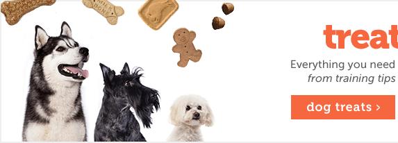 Treats 101- Dogs
