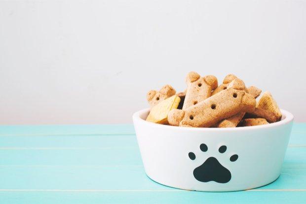 Dog Treat Sample Box