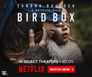 imdb bird box