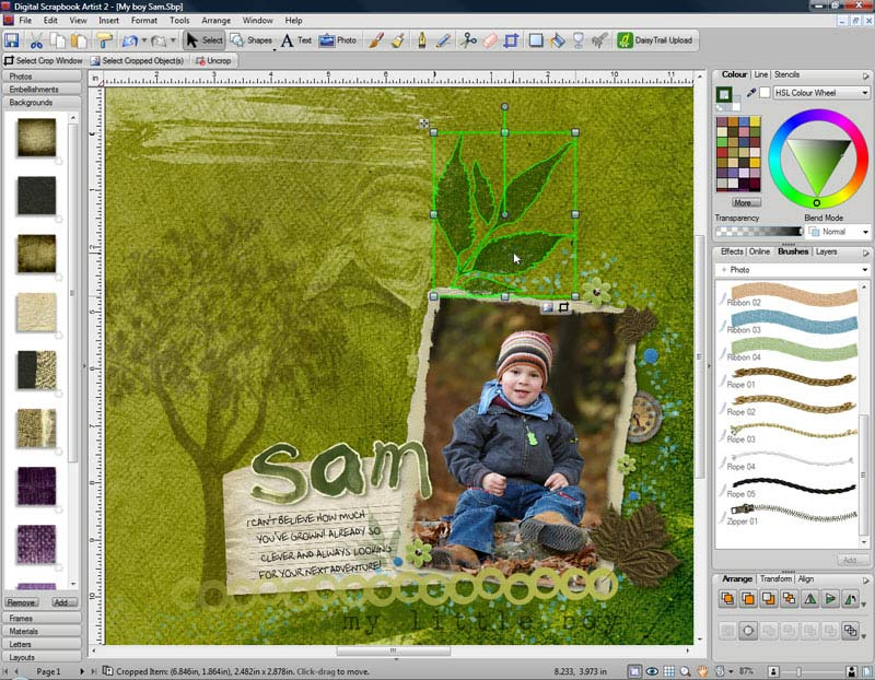 Digital Scrapbook Artist 2 makes it easy to create scrapbooks, cards