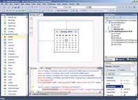 Visual Studio 2010 Professional Code Editor