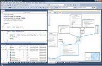 Visual Studio 2010 Professional Debug