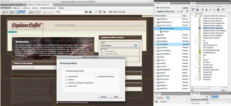 amazon com adobe dreamweaver cs5 mac old version software