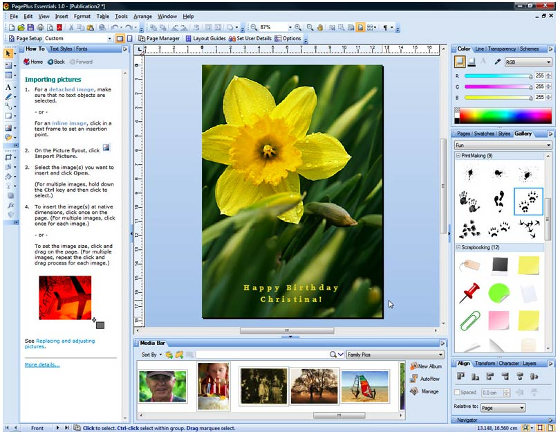 Amazon.com: Serif PagePlus Essentials: Software