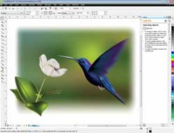CorelDRAW Home and Student Suite X5--Mesh