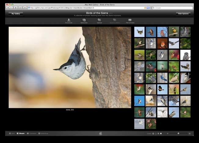 Cost of Apple Aperture Software