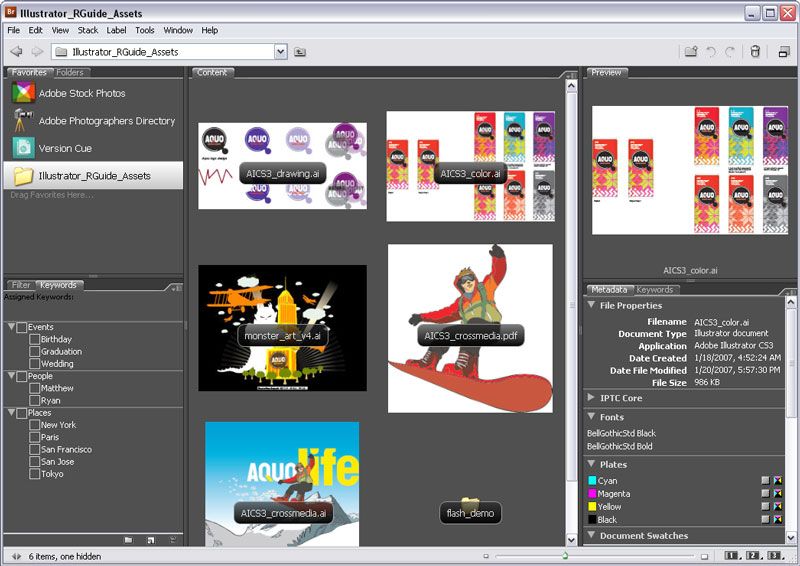 suite Adobe creative