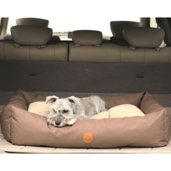 Tan SUV Bed