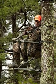 Amazon Com Summit 180 Max Sd Treestand Hunting Tree
