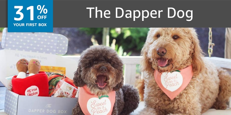 31% off your first box of The Dapper Dog