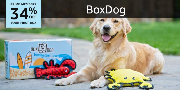 Box Dog Monthly