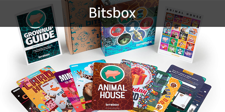 Bitsbox: Teach your kids to love coding.