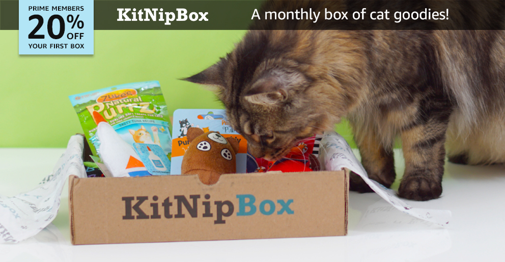 20% off your first KitNipBox