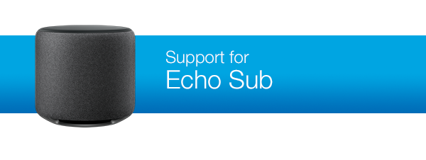 Support for Echo Sub