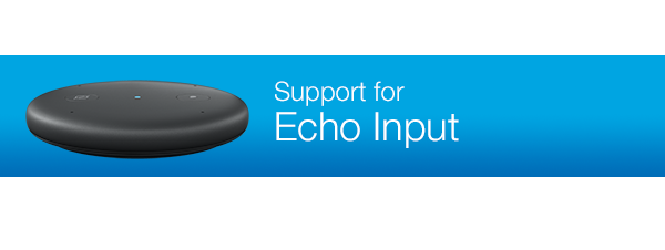 Support for Echo Input