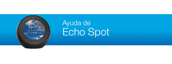 Support for Echo Spot