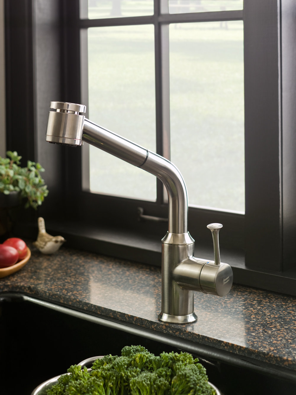 American Standard 4332.100.075 Pekoe Pull Out Kitchen Faucet ...