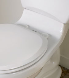 The Cadet 3 Flowise Toilet