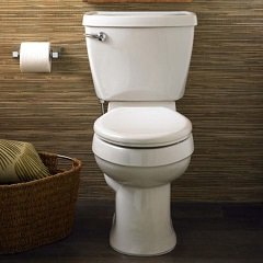 The Champion toilet seat fits with a variety of bathroom decors.