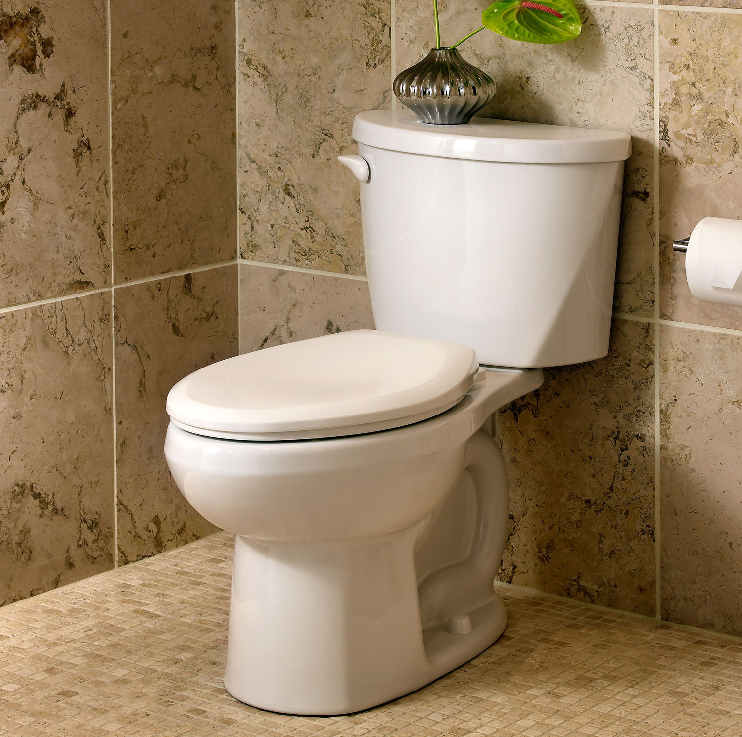 American standard everclean elongated toilet for Toilet decor pictures