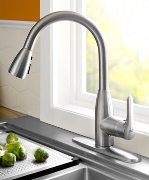 A Stainless Steel Colony Faucet With A Kitchen Sink