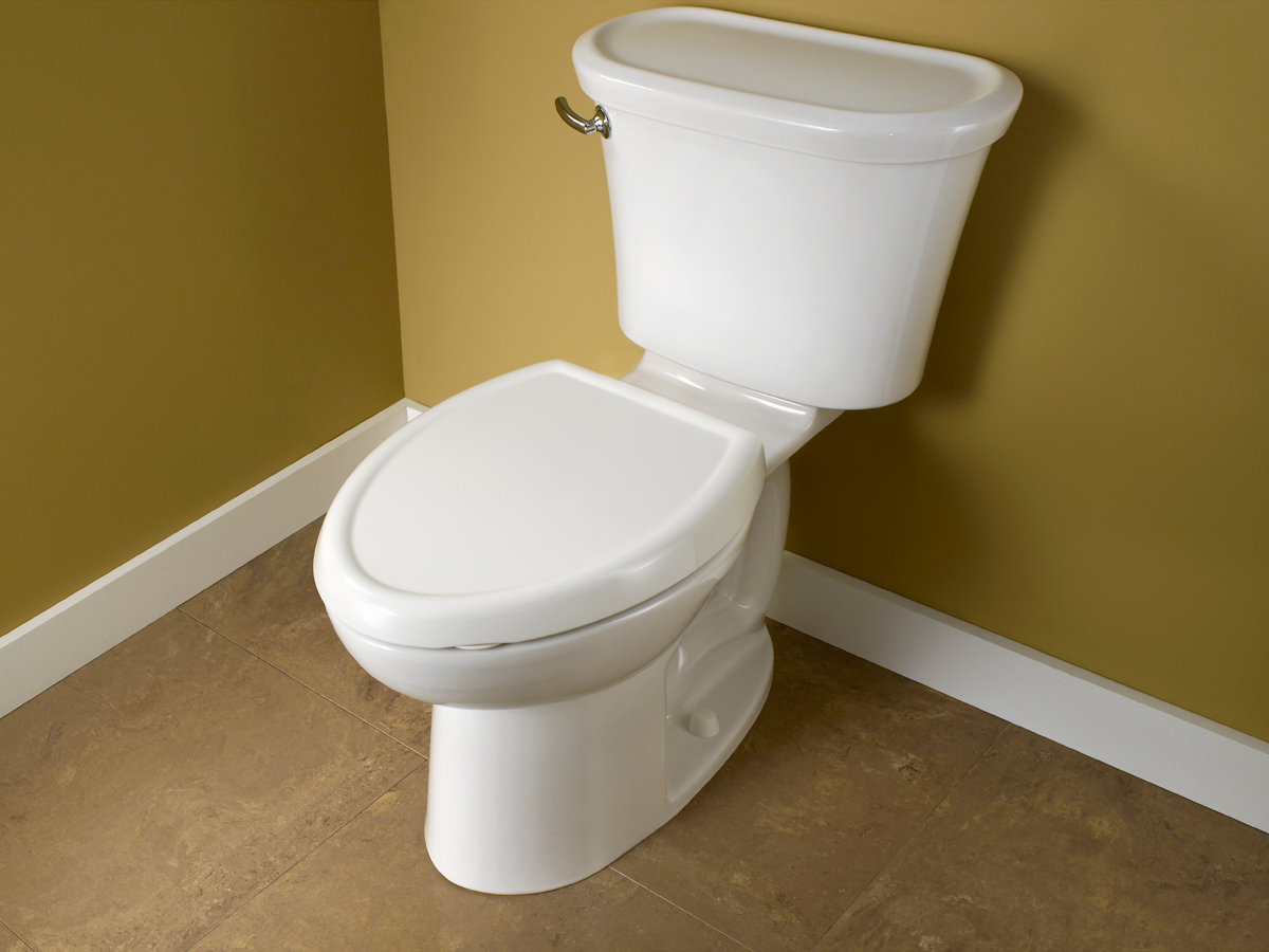 High Toilet Seat Height: American Standard 2459.101.178 Tropic Cadet 3 FloWise
