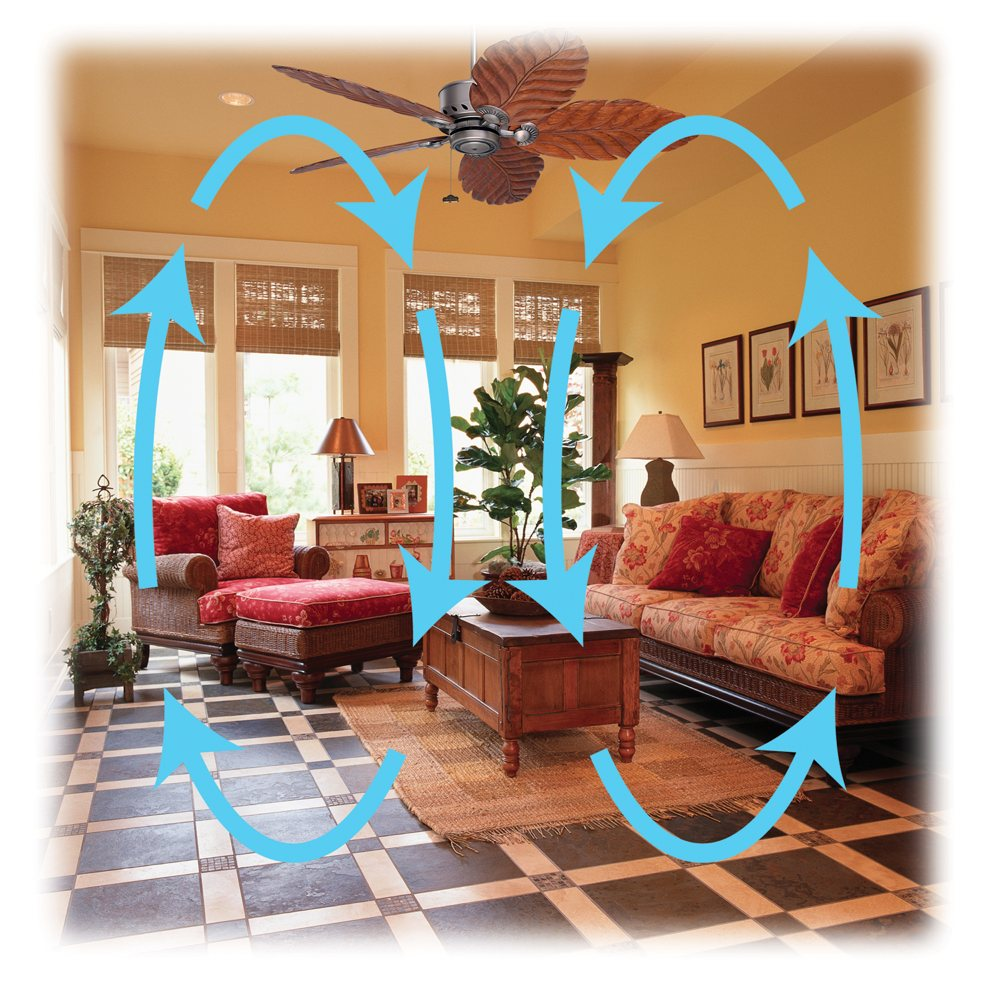 Spin The Fan Counter Clockwise In Summer To Create A Wind Chill Effect And Save On Air Conditioning Bills