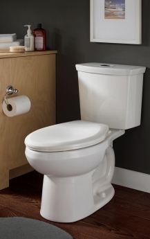 H2Option dual-flush elongated toilet